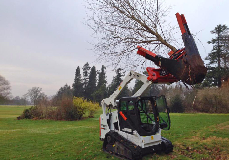 Bobcat Tree Transplanter Hire